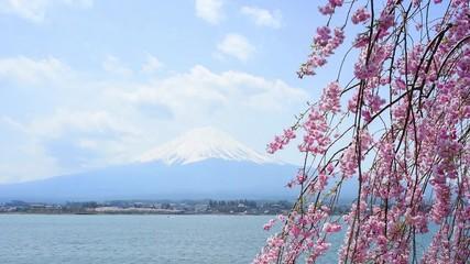 Fotomurales - Fujisan view from Kawaguchiko lake, Japan