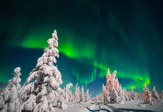Winter landscape with forest and polar light over the taiga