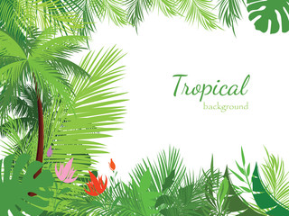 Tropical jungle background with palm trees and leaves.