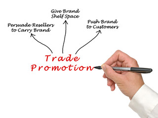 Wall Mural - Diagram of Trade Promotion