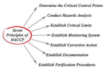 Illustrazione principles of haccp