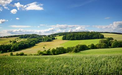 Saarland – Landschaft mit Roggenfeld – Kulturlandschaft bei Heusweiler Eiweiler im Sommer