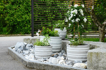 Flower pots with green and white plants arranged in a stone garden