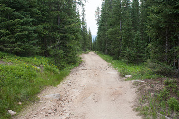 Off Road Trail in the Rocky Mountains