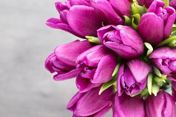 Obraz Bukiet fioletowych tulipanów na szarym tle - fototapety do salonu