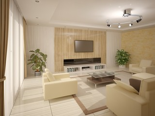 Comfortable and spacious living room.