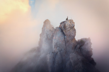 Wall Mural - Top of the mountains. High rocks in fog at sunset. Colorful nature background