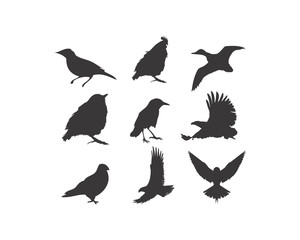birds silhouette logo icon vector
