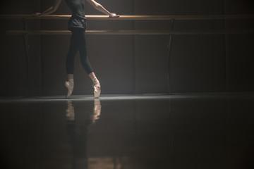 Ballet dancer's body