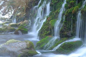 Foto op Canvas 冬の元滝伏流水