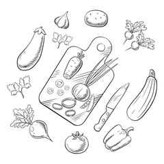 Cooking a vegetable salad, sketch icons