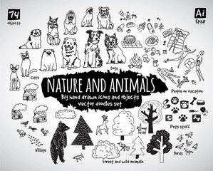 Big bundle animal and nature doodles icons objects.