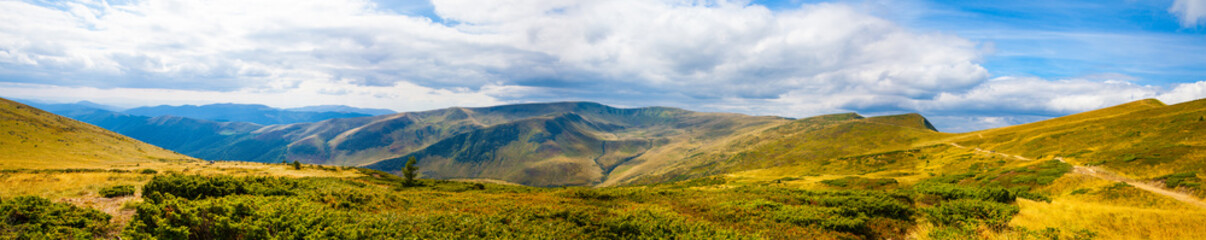 Carpathian mountains panoramic