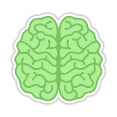 Human brain hemispheres Sticker - Vector illustration, realistic design element