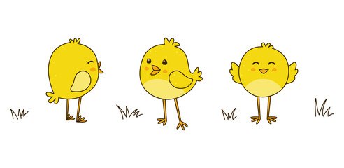 Cute cartoon chickens isolated on white