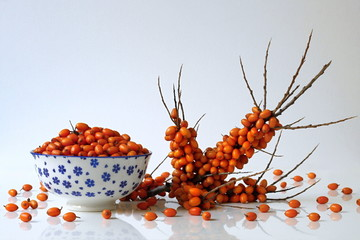 Sea buckthorn berries in a bowl and twig with fresh orange berries. Autumn still life with healthy berries in a chinese cup.