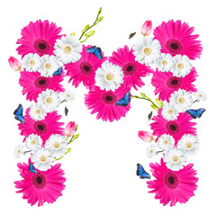 Alphabet M, flower isolated on white background. Gerber, tulips and butterfly