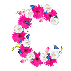 Alphabet C, flower isolated on white background. Gerber, tulips and butterfly