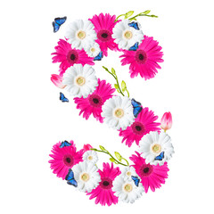 Alphabet S, flower isolated on white background. Gerber, tulips and butterfly