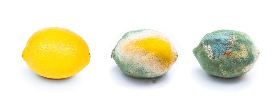 lemons - isolated white background