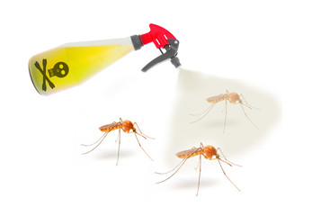 Plastic sprayer with insecticide spraying mosquitos. Digital artwork on pest control and healthcare theme.