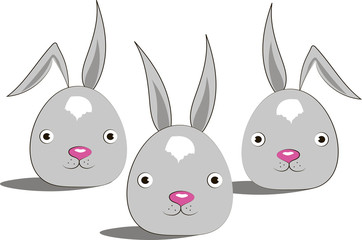 funny rabbits on the white background