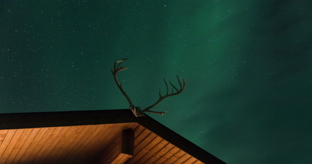 Fototapete - Northern lights above a cabin