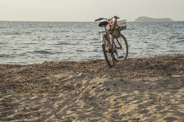 A bicycle at the beach