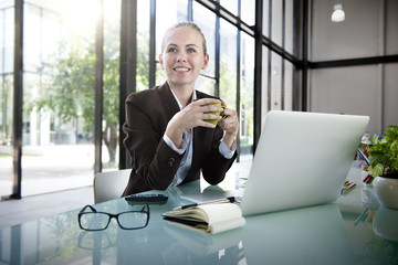 Businesswoman Laptop Technology Strategy Planning Working Concep