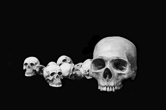 heads skull black background