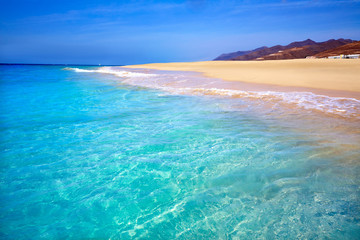 Foto op Aluminium Tunesië Morro Jable Matorral beach Jandia in Fuerteventura