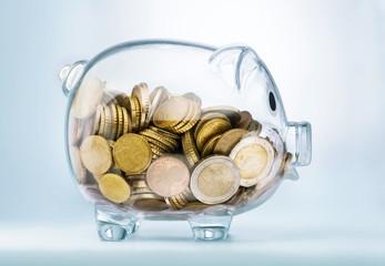 A see through piggy bank