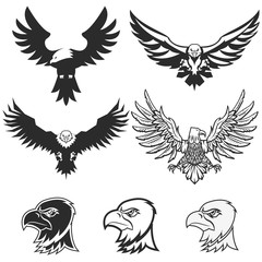 Set of eagles. Design elements for logo, label, emblem, badge te
