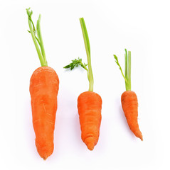 Baby carrot fresh isolated on white background