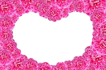Valentines Day Heart Made of Pink Roses Isolated on White Backgr