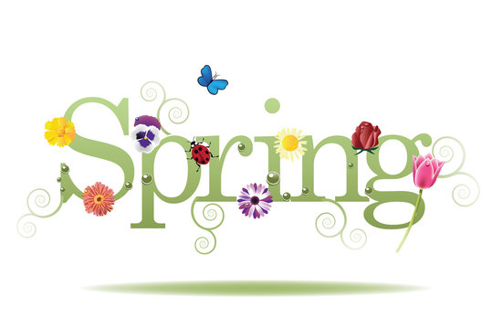 Spring word, flowers and butterfly vector