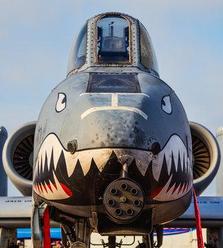 The face of an A-10 WartHog  aircraft.
