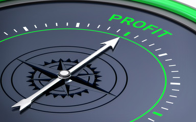 3D Compass. Profit Word