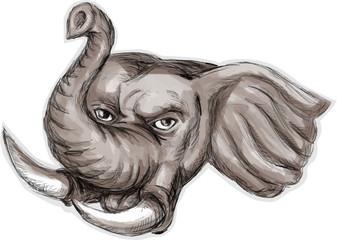 African Elephant Head Watercolor