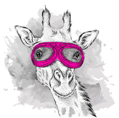 Portrait of a giraffe in motorcycle glasses. Vector illustration