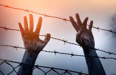 Refugee men and fence