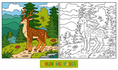 Coloring book for children (deer and background)