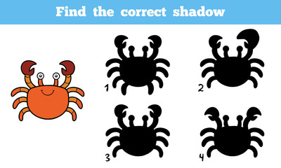 Find the correct shadow (crab)
