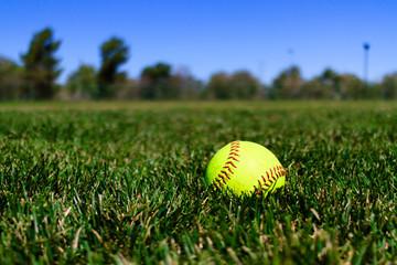 Softball at a Field in California