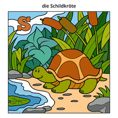 German alphabet, letter S (turtle and background)