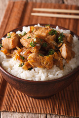 Japanese cuisine: oyakodon with rice in a bowl close up. Vertical