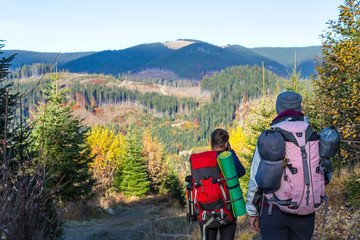 Back View of two Hikers with Backpacks walking on Forest Trail