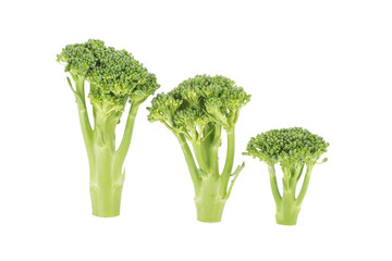 baby broccoli cabbage isolated on White Background