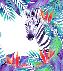 Tropical jungle card. Floral design with zebra on white background.