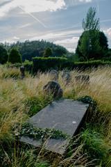 Überwachsener Friedhof und Grabsteine in Irland